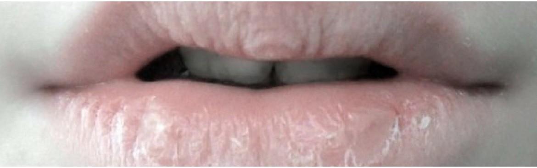 Bálsamo labial ecológico, aceites - mantecas para hidratar los labios.